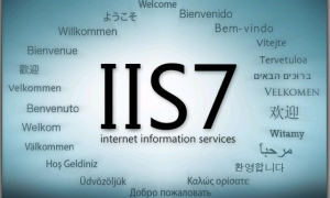 How To Migrate IIS7.5 to IIS8.0